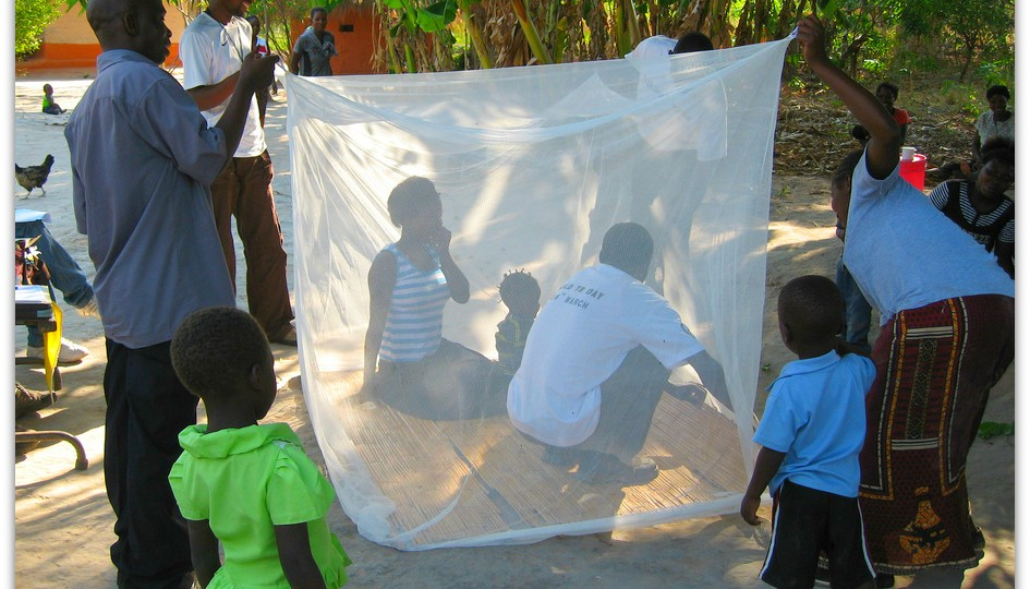 Teaching people about using mosquito nets