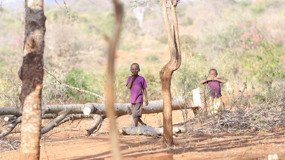 Children in Kenya need help accessing food and clean water.