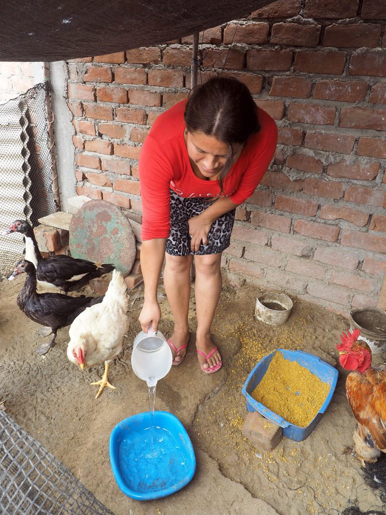 Maria Elena in Peru with her chickens changing her life