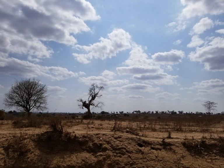 Mutomo landscape. Dry, arid lands.