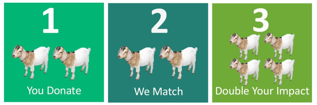 You donate. We match. Double your impact.