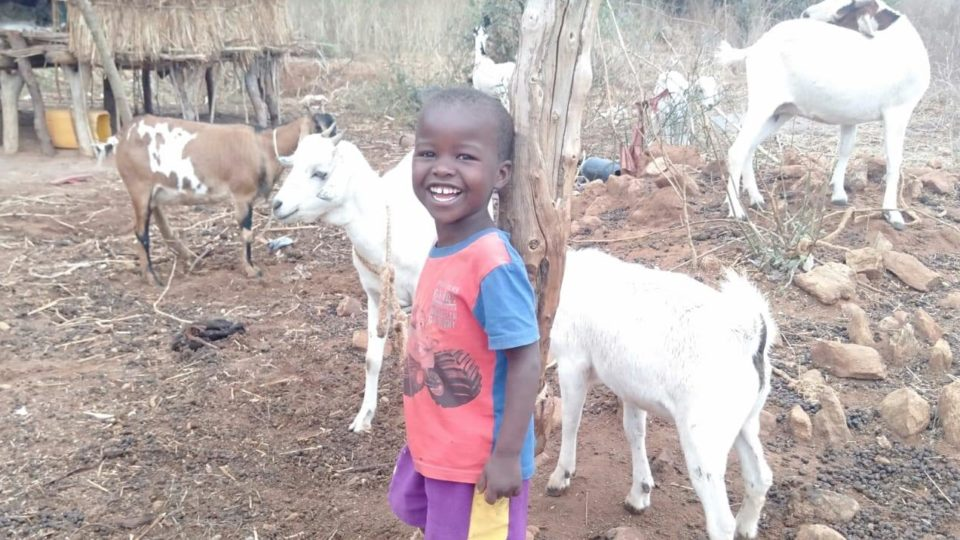 Little girls with goats in Kenya