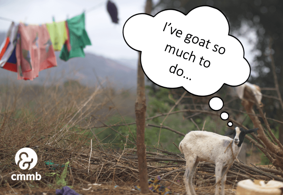 Goat puns for #GivingTuesday 3rd annual goat giving challenge