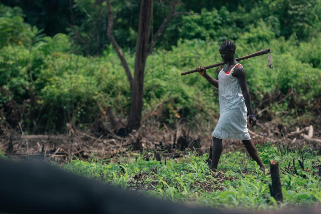 Collecting firewood in South Sudan