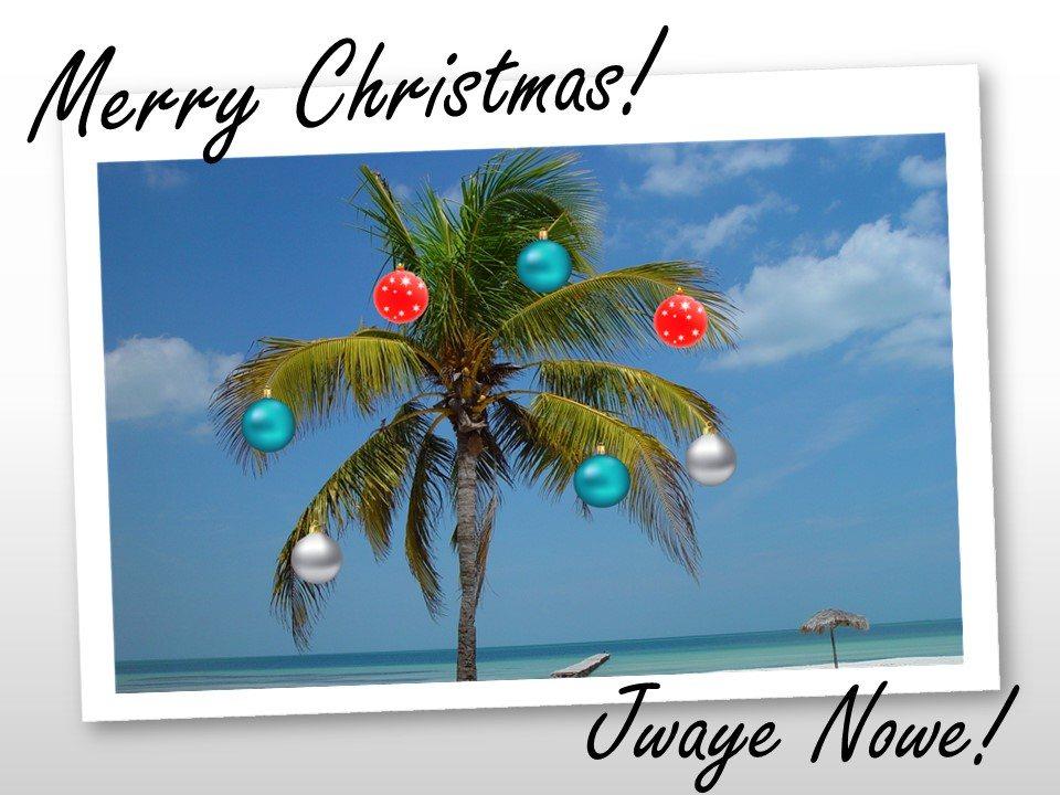 Palm Tree Christmas Card Cmmb