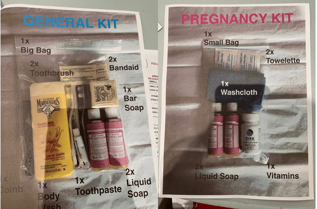 Example kits for women and expectant mothers