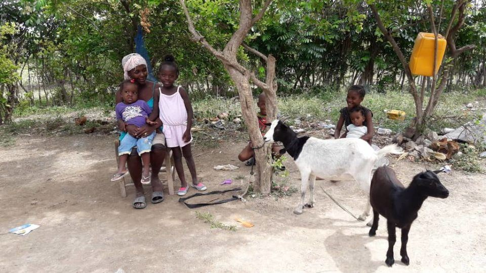 A family sitting outside while their goat feeds