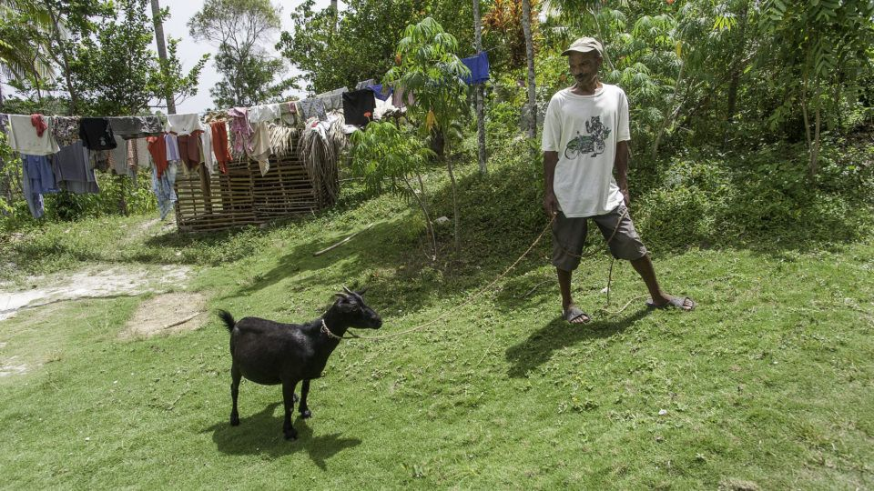 Man stands with a black goat in Haiti. Give a goat in honor of your G.O.A.T.