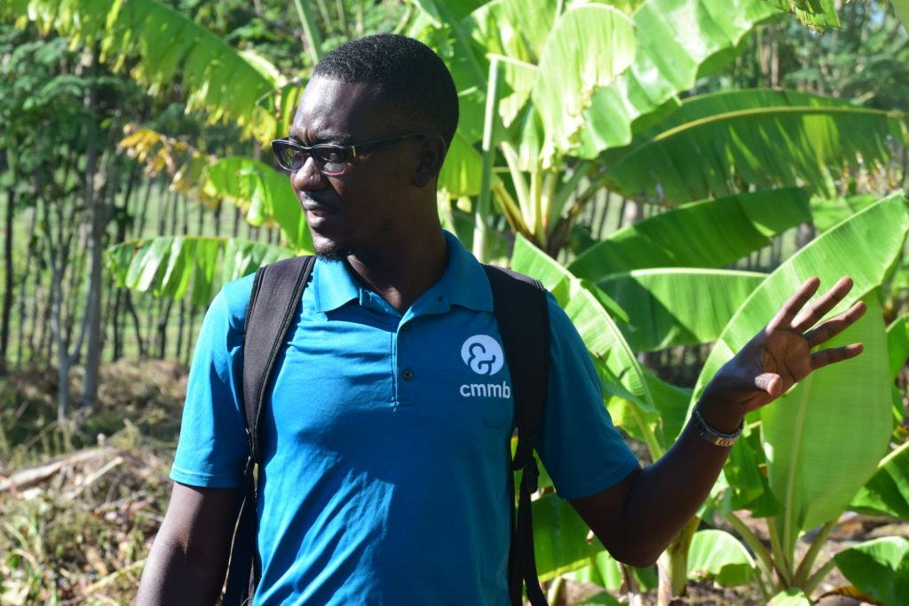 cmmb's agronomy project leader, Lunis, in Cotes-de-fer, Haiti