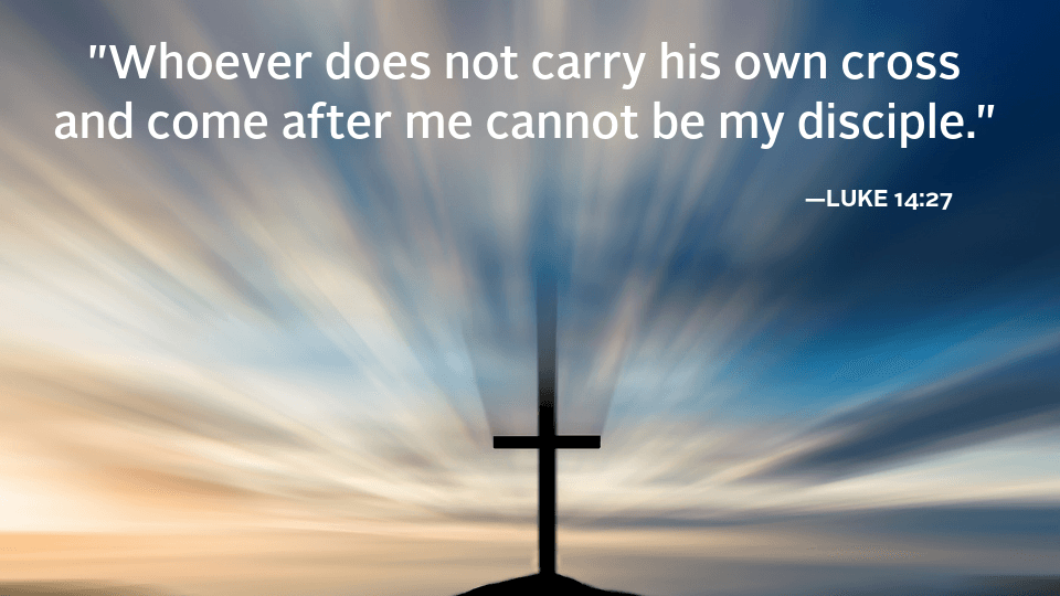 cmmb weekly reflection - gospel quote