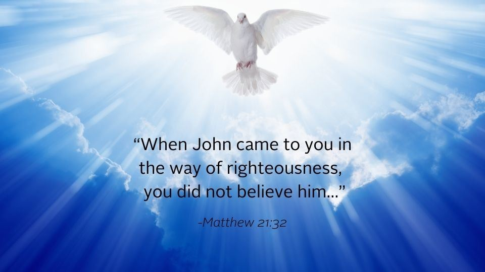 dove in the sky with bible quote from matthew