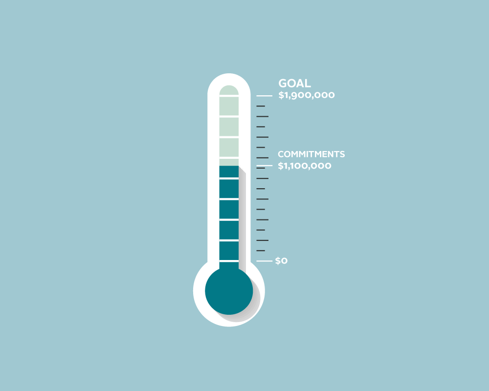 A meter of CMMB's fundraising goal for COVID-19 emergency response.