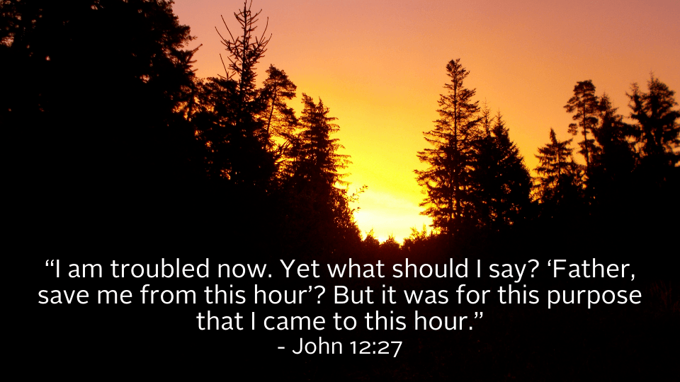 march 21 weekly reflection image with bible quote