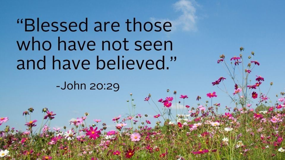 flower field and bible quote